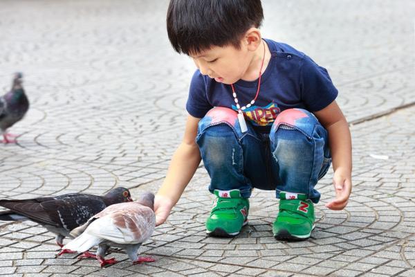 diritti animali scuola