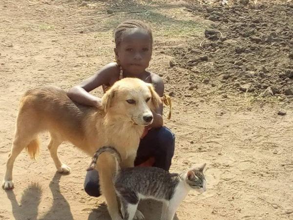 Liberia Animal Welfare & Conservation Society